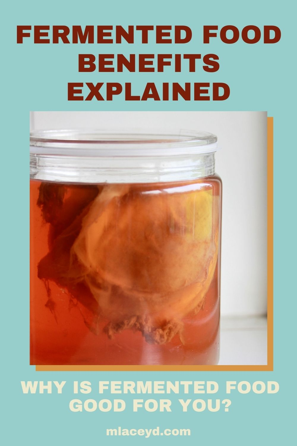 fermented food benefits explained: why is fermented food food for you?